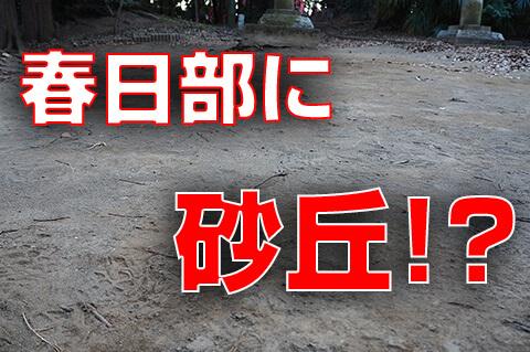 【春日部市】春日部に砂丘があるって知ってました?浜川戸砂丘に行ってみた!