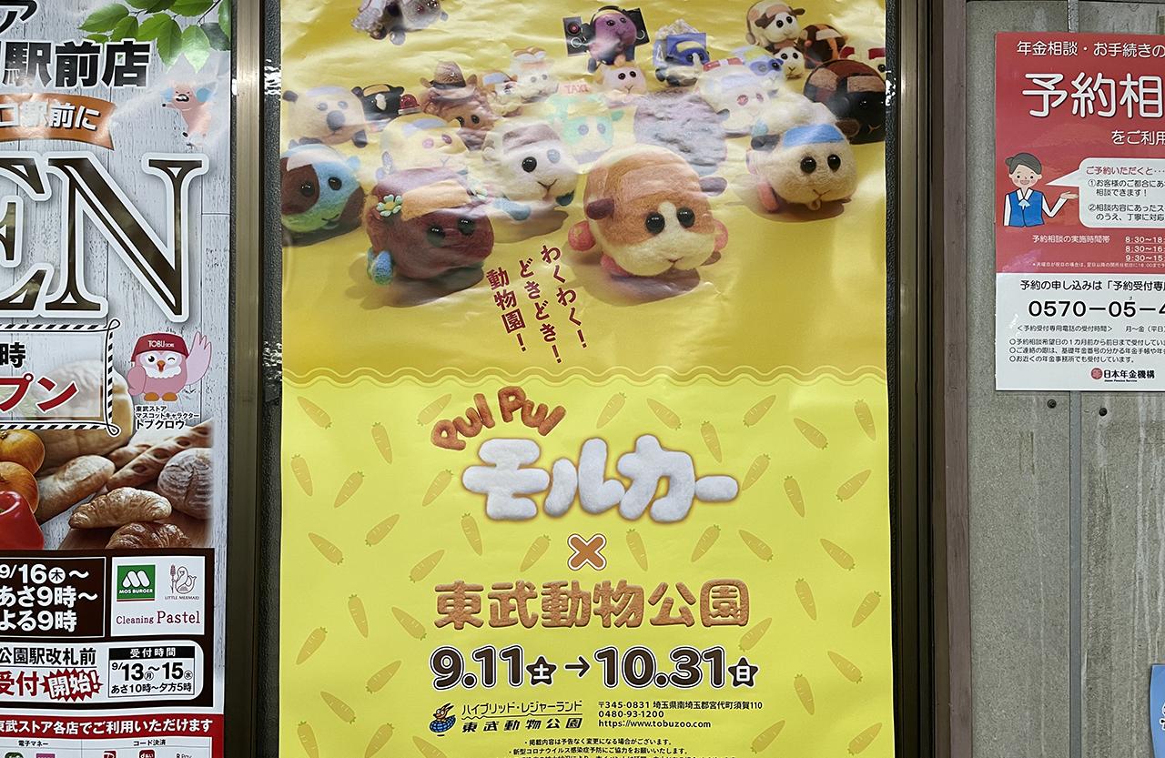 PUI PUI モルカー×東武動物公園』コラボイベント